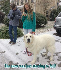 Kids Dog Snow South Carolina