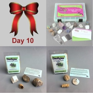10th Day: Deluxe Mineral Kit, Sand Dollar and Coral & Plant Fossils GeoBytes