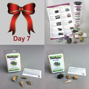 7th Day: Junior Mineral Kit, Fun Fossils GeoBytes, & Snail Fossil GeoBytes