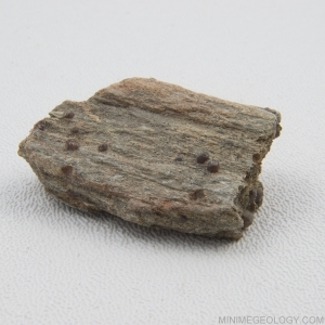 garnet schist metamorphic rock mini me geology