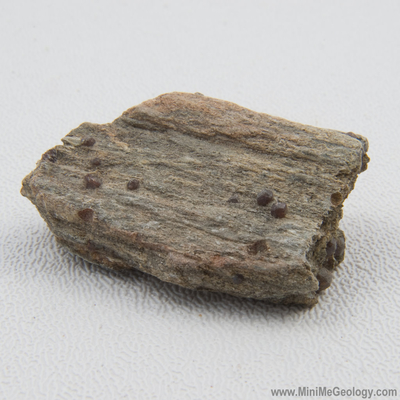Garnet Schist Metamorphic Rock - Mini Me Geology