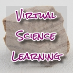Online Tutoring & Group Classes