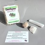 GeoBytes Collectors Kits