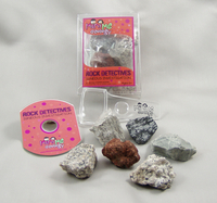 Rock Detectives Igneous Investigation