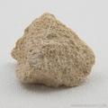 Oolitic Limestone Sedimentary Rock
