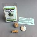 Sand Dollar Family Fossil